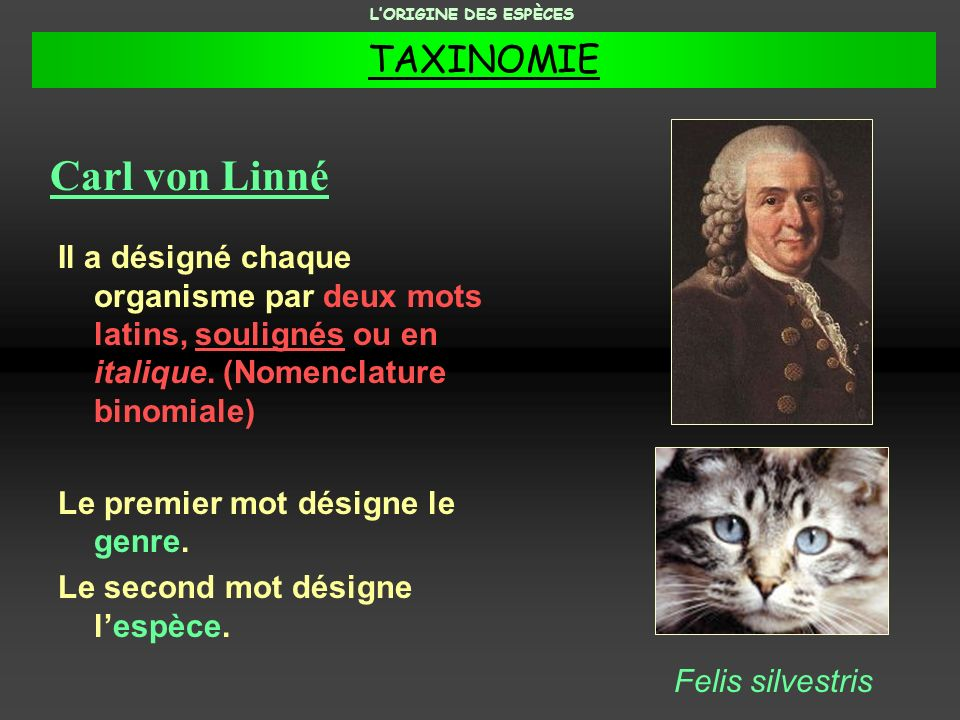 Carl von Linné Il a désigné chaque organisme par deux mots latins, soulignés ou en italique. (Nomenclature binomiale) Le premier mot désigne le genre.