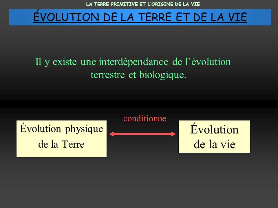 Il y existe une interdépendance de lévolution terrestre et biologique. Évolution physique de la Terre Évolution de la vie conditionne LA TERRE PRIMITI