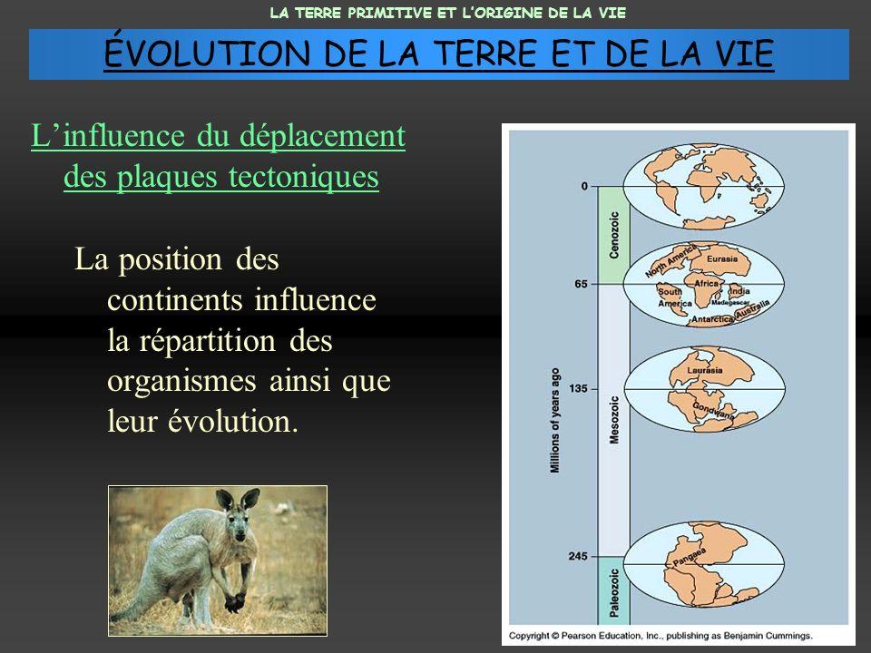 Linfluence du déplacement des plaques tectoniques La position des continents influence la répartition des organismes ainsi que leur évolution. LA TERR