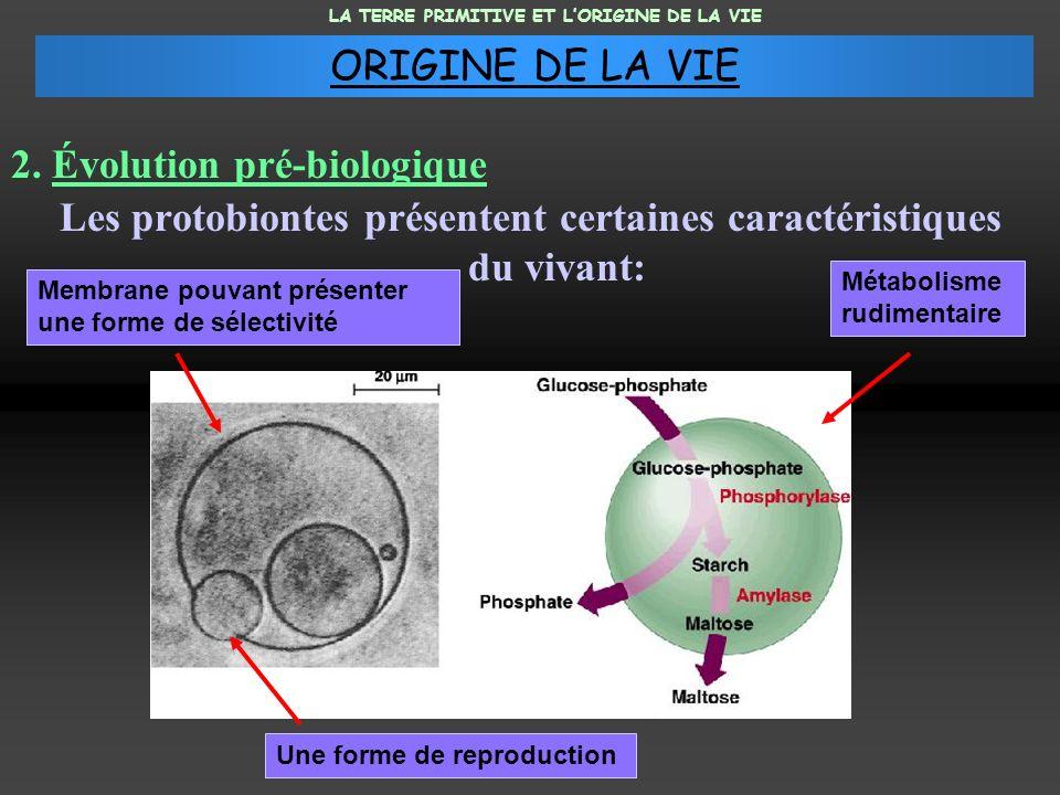 2. Évolution pré-biologique Les protobiontes présentent certaines caractéristiques du vivant: Membrane pouvant présenter une forme de sélectivité Méta