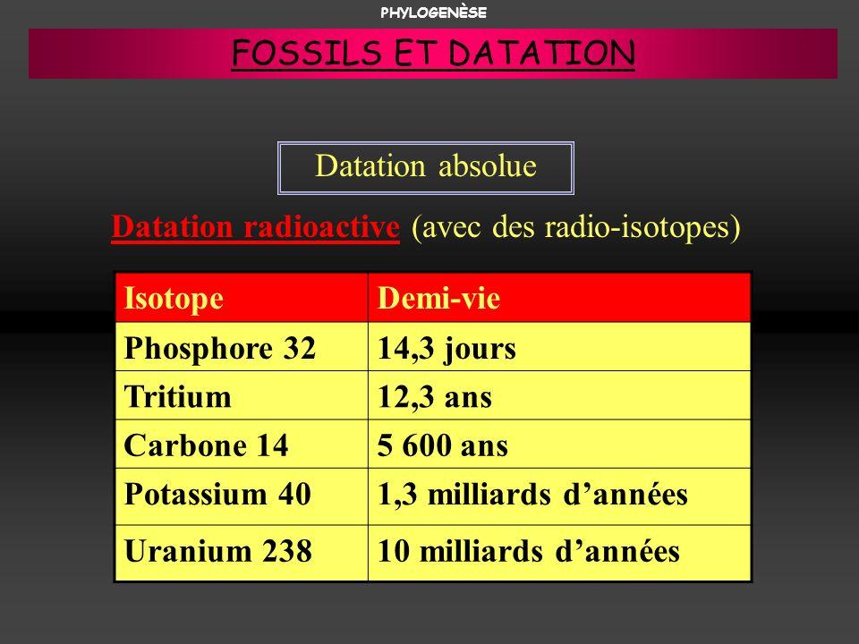 Datation absolue Datation radioactive (avec des radio-isotopes) IsotopeDemi-vie Phosphore 3214,3 jours Tritium12,3 ans Carbone 145 600 ans Potassium 4