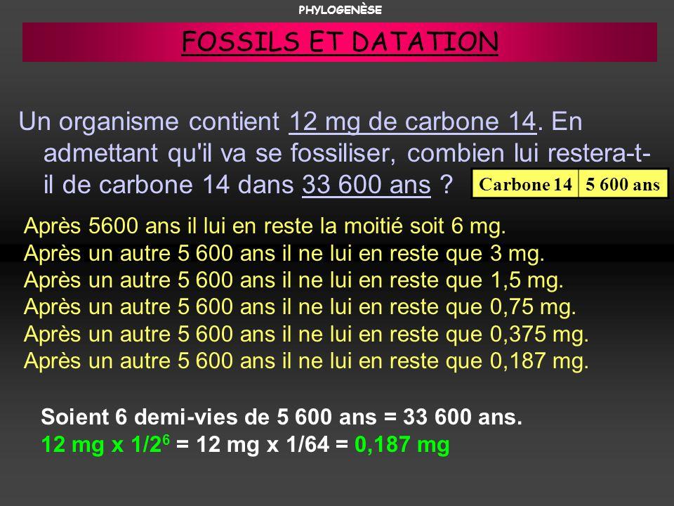 Un organisme contient 12 mg de carbone 14. En admettant qu'il va se fossiliser, combien lui restera-t- il de carbone 14 dans 33 600 ans ? Après 5600 a