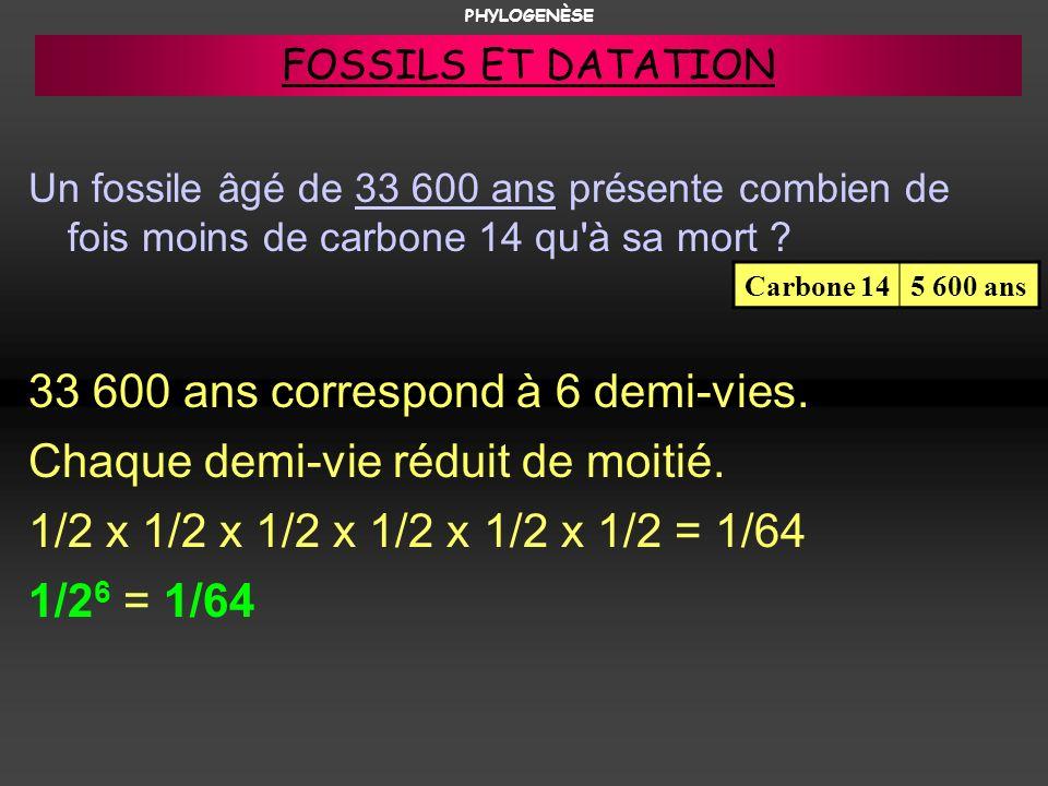 Un fossile âgé de 33 600 ans présente combien de fois moins de carbone 14 qu'à sa mort ? 33 600 ans correspond à 6 demi-vies. Chaque demi-vie réduit d