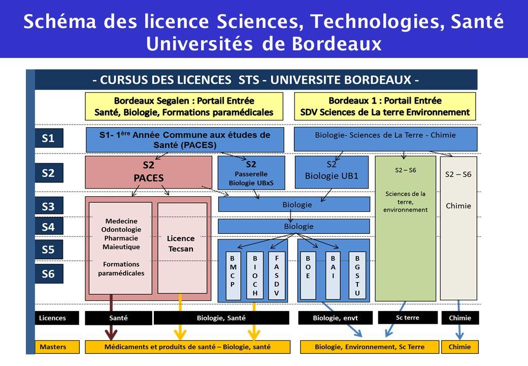 Schéma des licence Sciences, Technologies, Santé Universités de Bordeaux