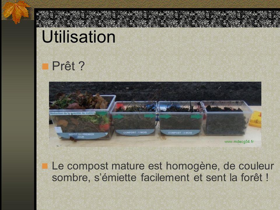 Utilisation Prêt ? Le compost mature est homogène, de couleur sombre, sémiette facilement et sent la forêt ! www.mdecg54.fr