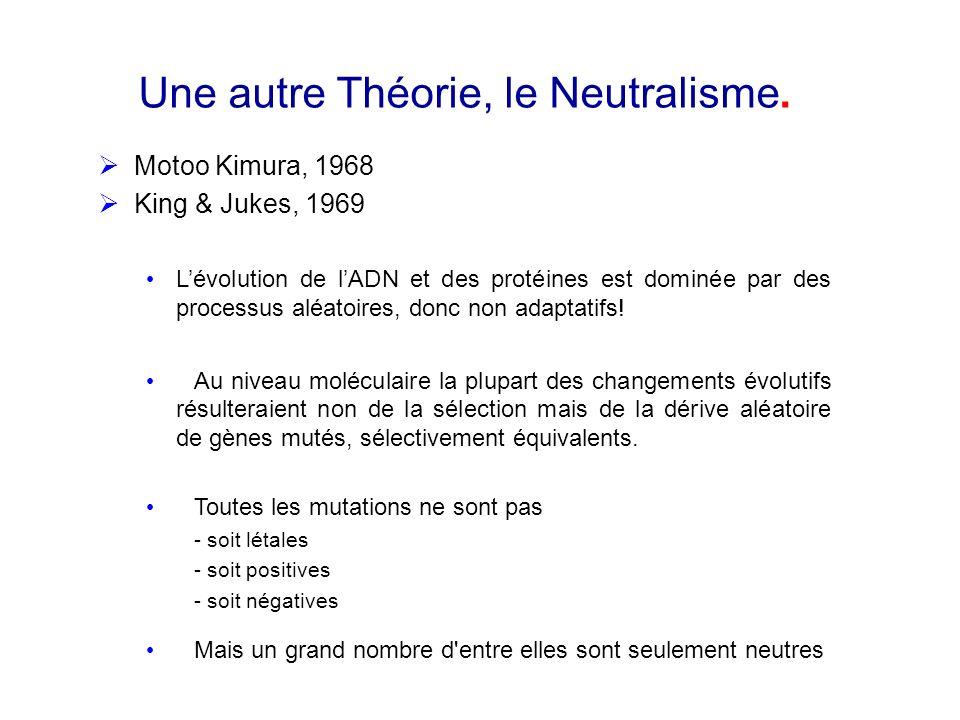 Une autre Théorie, le Neutralisme. Motoo Kimura, 1968 King & Jukes, 1969 Lévolution de lADN et des protéines est dominée par des processus aléatoires,