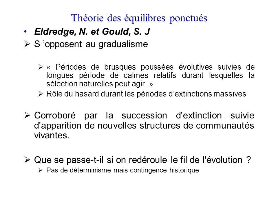 Théorie des équilibres ponctués Eldredge, N. et Gould, S. J S opposent au gradualisme « Périodes de brusques poussées évolutives suivies de longues pé