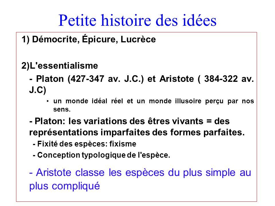Petite histoire des idées 1) Démocrite, Épicure, Lucrèce 2)L'essentialisme - Platon (427-347 av. J.C.) et Aristote ( 384-322 av. J.C) un monde idéal r