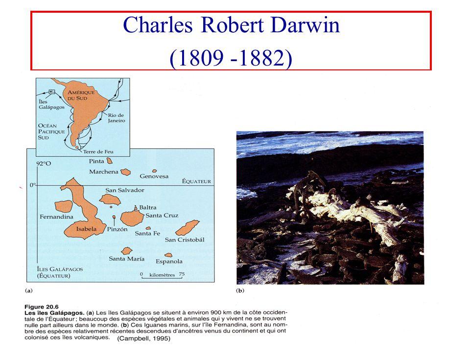 Charles Robert Darwin (1809 -1882) - un parcours sinueux Débute des études de médecine Pasteur Le voyage à bord du Beagle (1831 -1836)