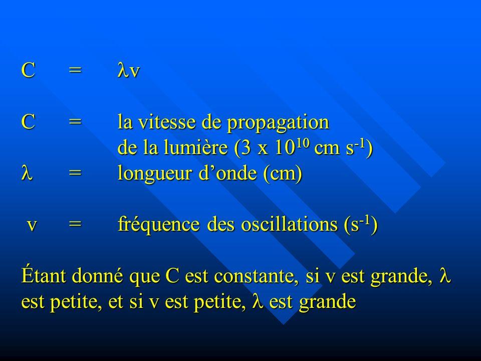 C= v C=la vitesse de propagation de la lumière (3 x 10 10 cm s -1 ) =longueur donde (cm) v=fréquence des oscillations (s -1 ) Étant donné que C est constante, si v est grande, est petite, et si v est petite, est grande