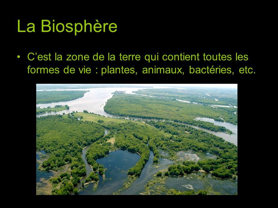 La Biosphère Cest la zone de la terre qui contient toutes les formes de vie : plantes, animaux, bactéries, etc.