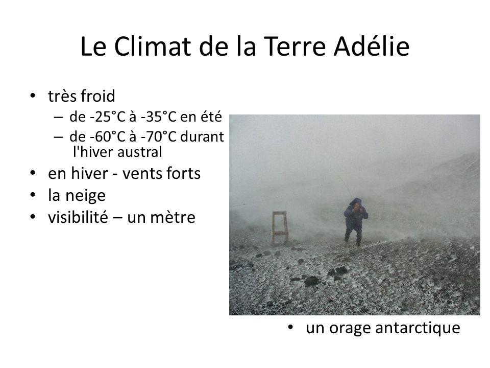 Le Climat de la Terre Adélie très froid – de -25°C à -35°C en été – de -60°C à -70°C durant l'hiver austral en hiver - vents forts la neige visibilité