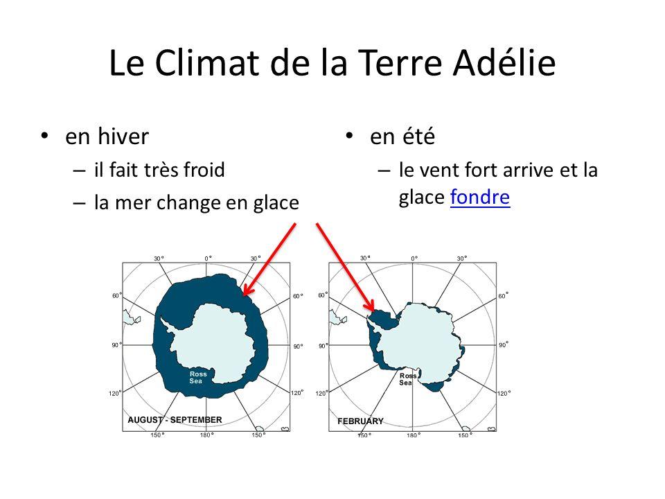 Le Climat de la Terre Adélie en hiver – il fait très froid – la mer change en glace en été – le vent fort arrive et la glace fondrefondre