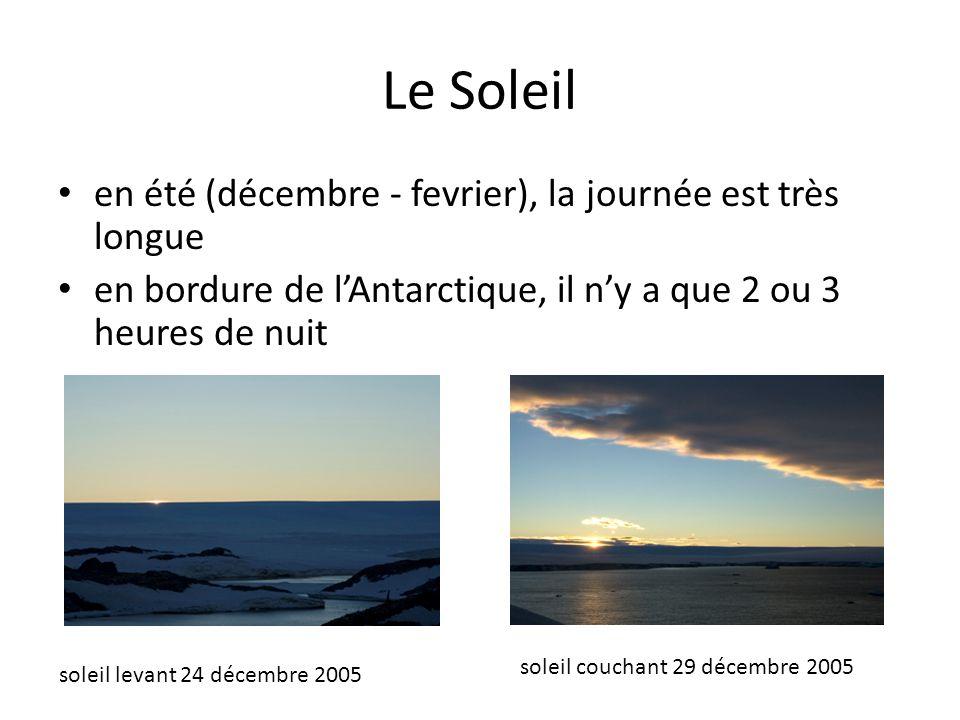 Le Soleil en été (décembre - fevrier), la journée est très longue en bordure de lAntarctique, il ny a que 2 ou 3 heures de nuit soleil couchant 29 déc