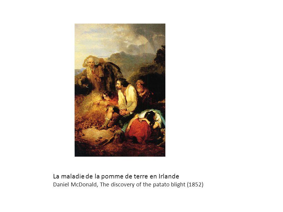 La maladie de la pomme de terre en Irlande Daniel McDonald, The discovery of the patato blight (1852)