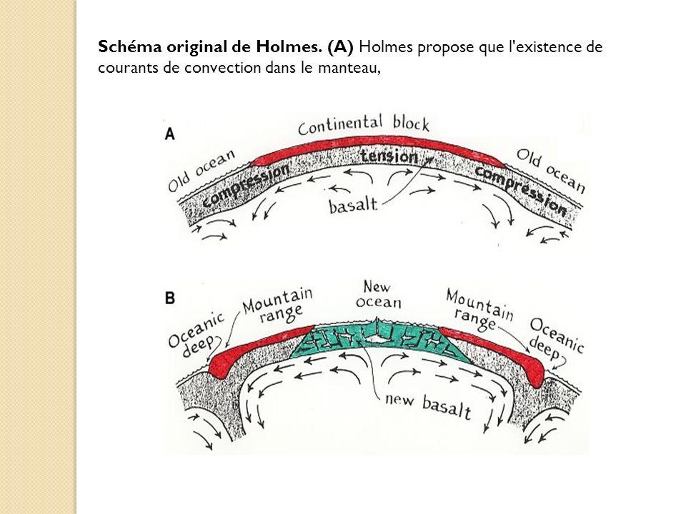 Schéma original de Holmes. (A) Holmes propose que l'existence de courants de convection dans le manteau,