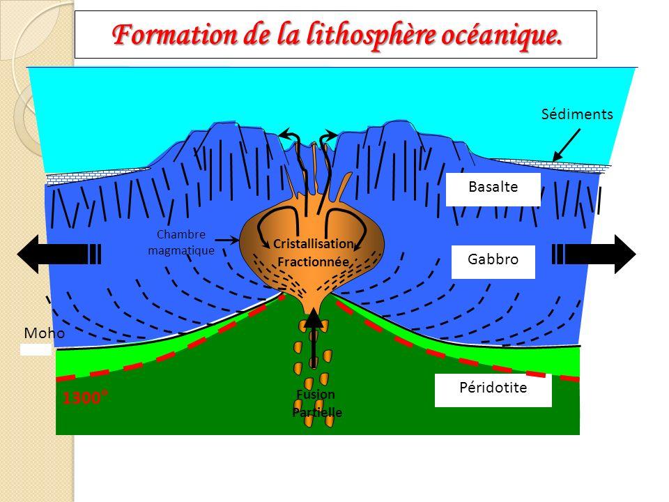 Chambre magmatique Moho Gabbro Sédiments Basalte Péridotite Cristallisation Fractionnée 1300° Fusion Partielle Formation de la lithosphère océanique.