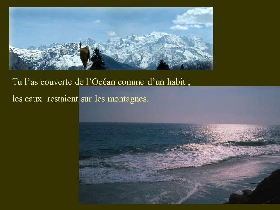 Tu las couverte de lOcéan comme dun habit ; les eaux restaient sur les montagnes.