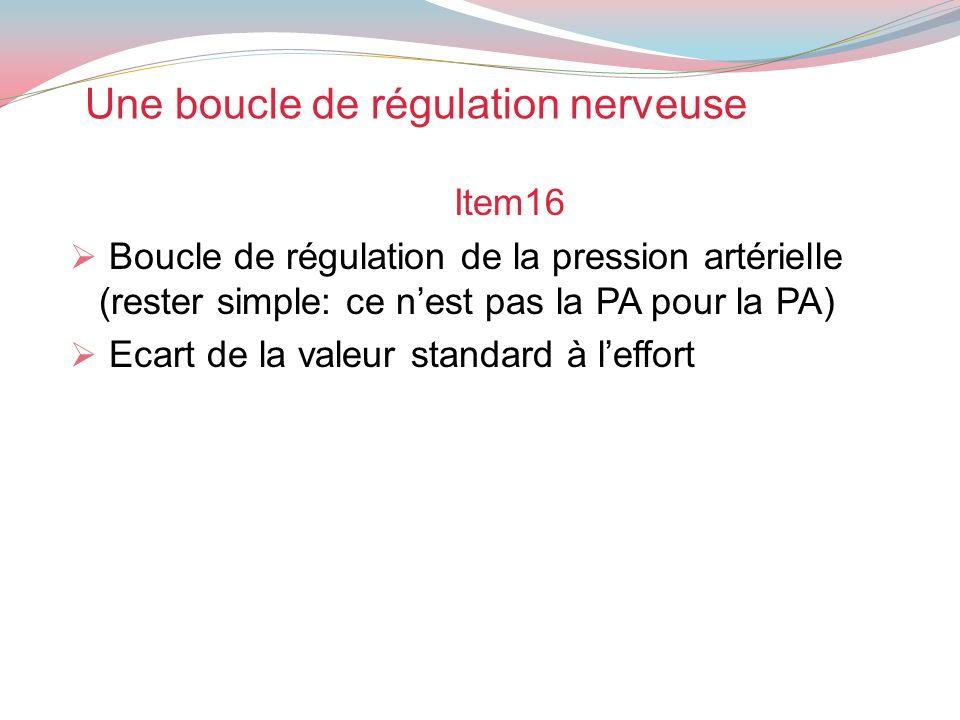 Une boucle de régulation nerveuse Item16 Boucle de régulation de la pression artérielle (rester simple: ce nest pas la PA pour la PA) Ecart de la vale