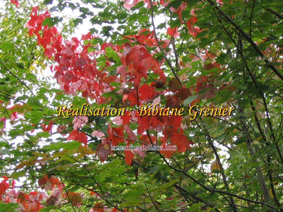 En automne, je récoltai toutes mes peines et les enterrai dans mon jardin. Lorsque avril refleurit et que la terre et le printemps célébrèrent leurs n