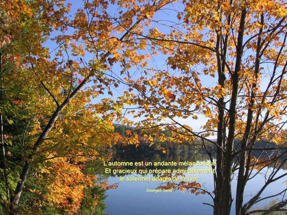 À lautomne des saisons, ce sont les feuilles qui meurent. À lautomne de la vie, ce sont nos souvenirs. À lautomne des saisons, ce sont les feuilles qu
