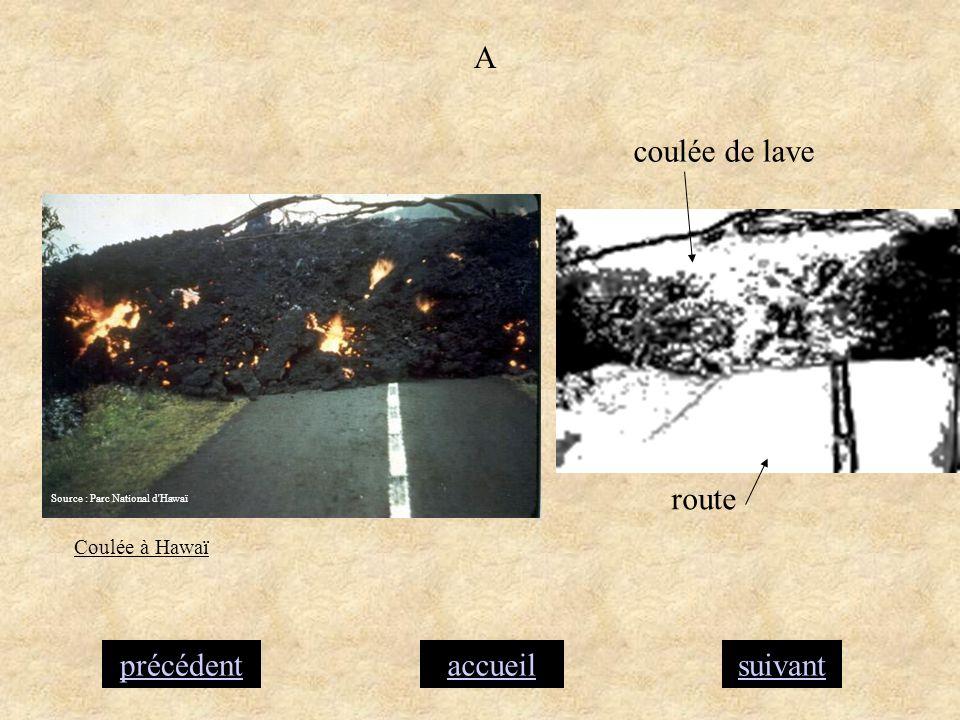 accueilsuivantprécédent A coulée de lave route Coulée à Hawaï Source : Parc National d'Hawaï