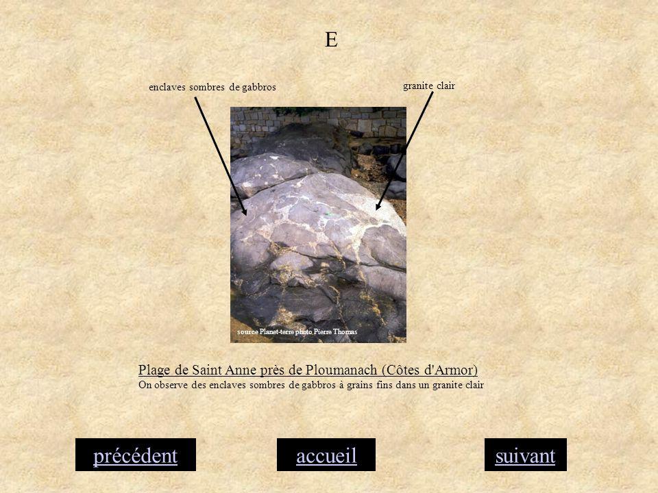 accueilsuivantprécédent E Plage de Saint Anne près de Ploumanach (Côtes d'Armor) On observe des enclaves sombres de gabbros à grains fins dans un gran