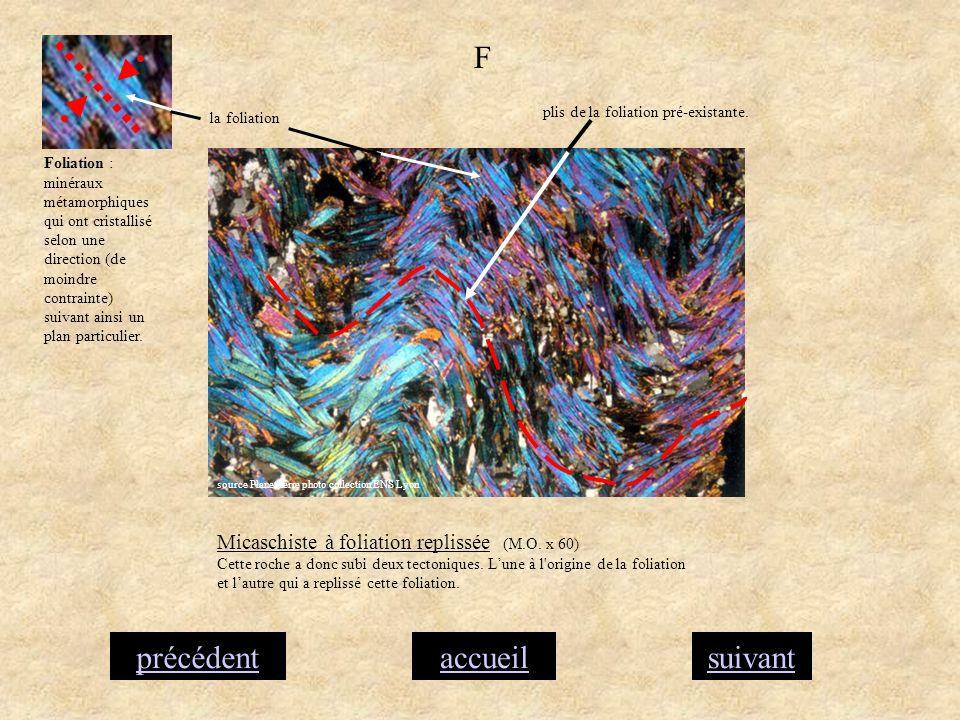 accueilsuivantprécédent F Micaschiste à foliation replissée (M.O. x 60) Cette roche a donc subi deux tectoniques. Lune à l'origine de la foliation et