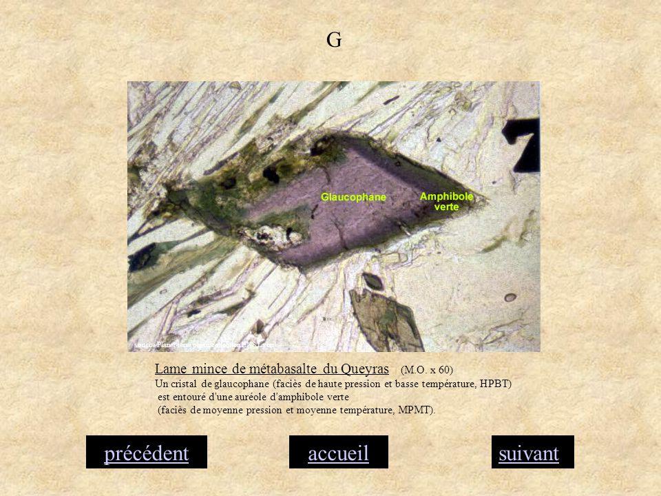 accueilsuivantprécédent G Lame mince de métabasalte du Queyras (M.O. x 60) Un cristal de glaucophane (faciès de haute pression et basse température, H