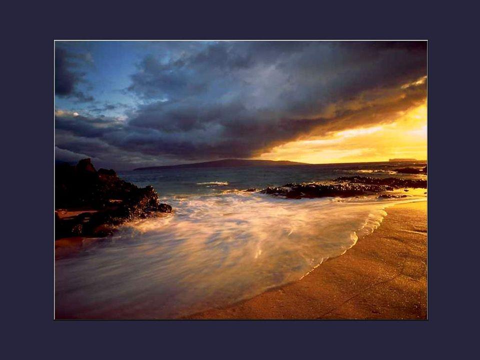 Entendez-vous la symphonie des eaux vives qui se précipitent sur les rochers en cascades, arrachant au passage les mousses et les fougères? C'est un c