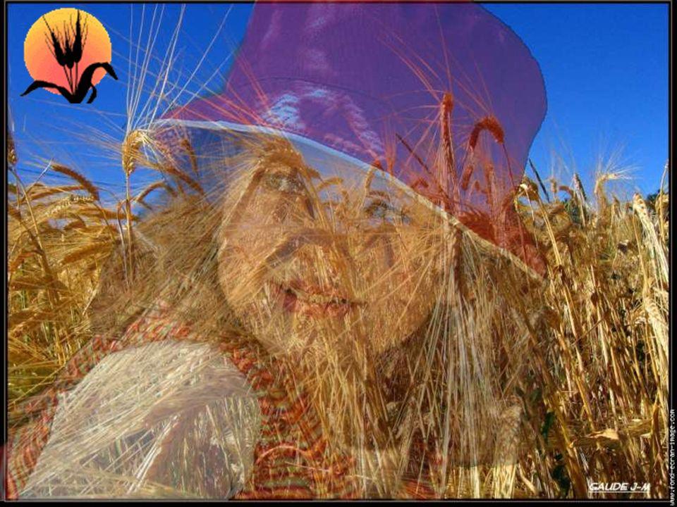 Ah! si j'étais un grain de blé Semé à tout vent. Je me cacherais dans la terre cultivée Par quelques braves gens. Je serais tout petit, tout mignon Ma