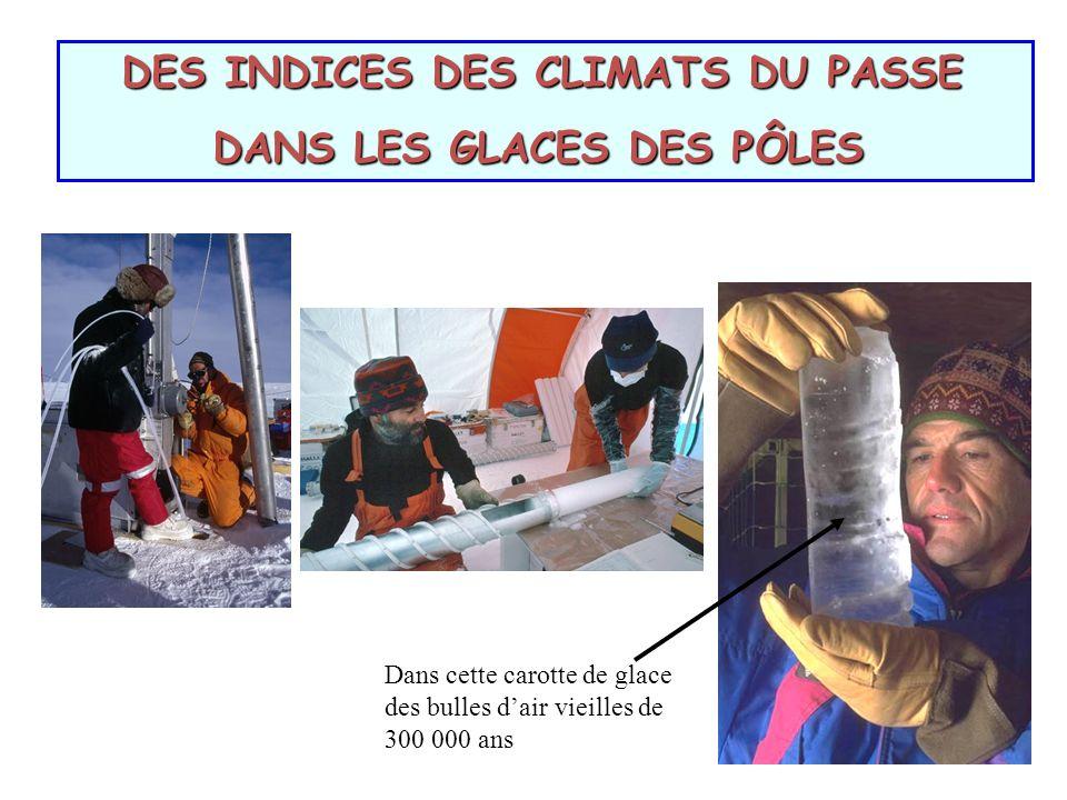 DES INDICES DES CLIMATS DU PASSE DES INDICES DES CLIMATS DU PASSE DANS LES GLACES DES PÔLES DANS LES GLACES DES PÔLES Dans cette carotte de glace des