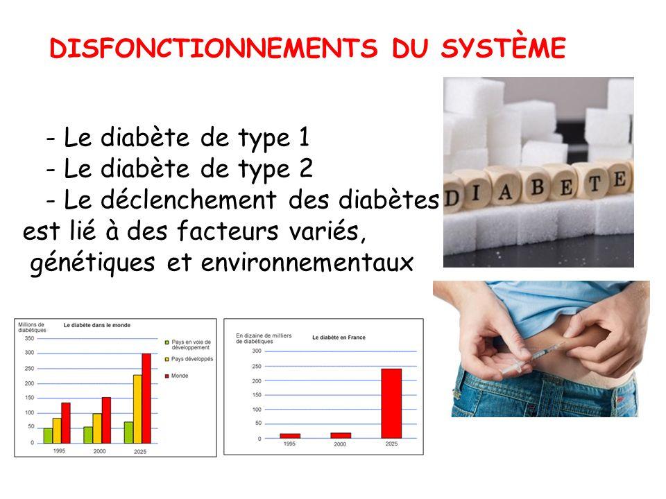 . DISFONCTIONNEMENTS DU SYSTÈME - Le diabète de type 1 - Le diabète de type 2 - Le déclenchement des diabètes est lié à des facteurs variés, génétique