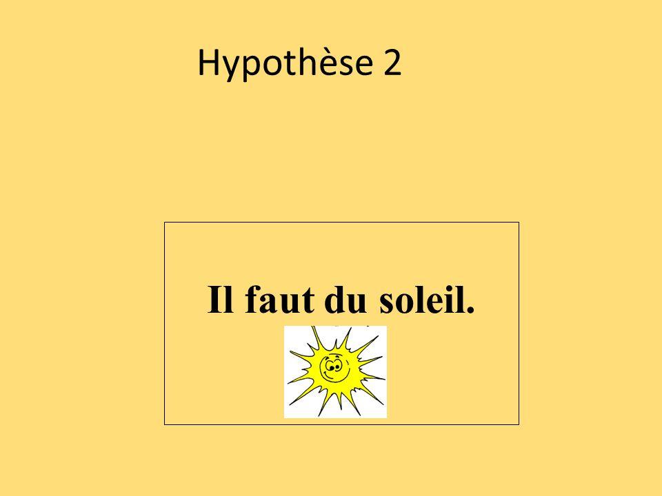 Hypothèse 2 Il faut du soleil.