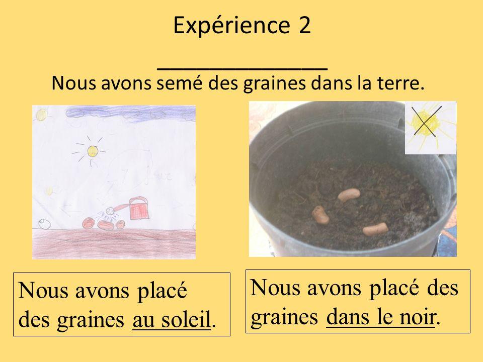 Expérience 2 _____________ Nous avons semé des graines dans la terre. Nous avons placé des graines au soleil. Nous avons placé des graines dans le noi