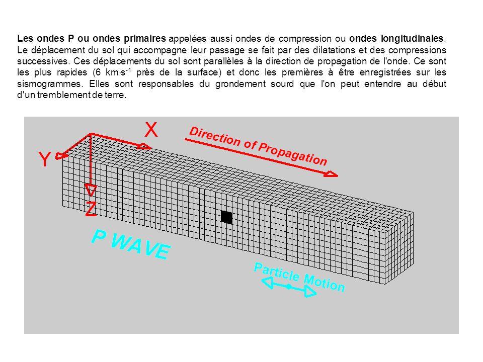 Les ondes P ou ondes primaires appelées aussi ondes de compression ou ondes longitudinales. Le déplacement du sol qui accompagne leur passage se fait