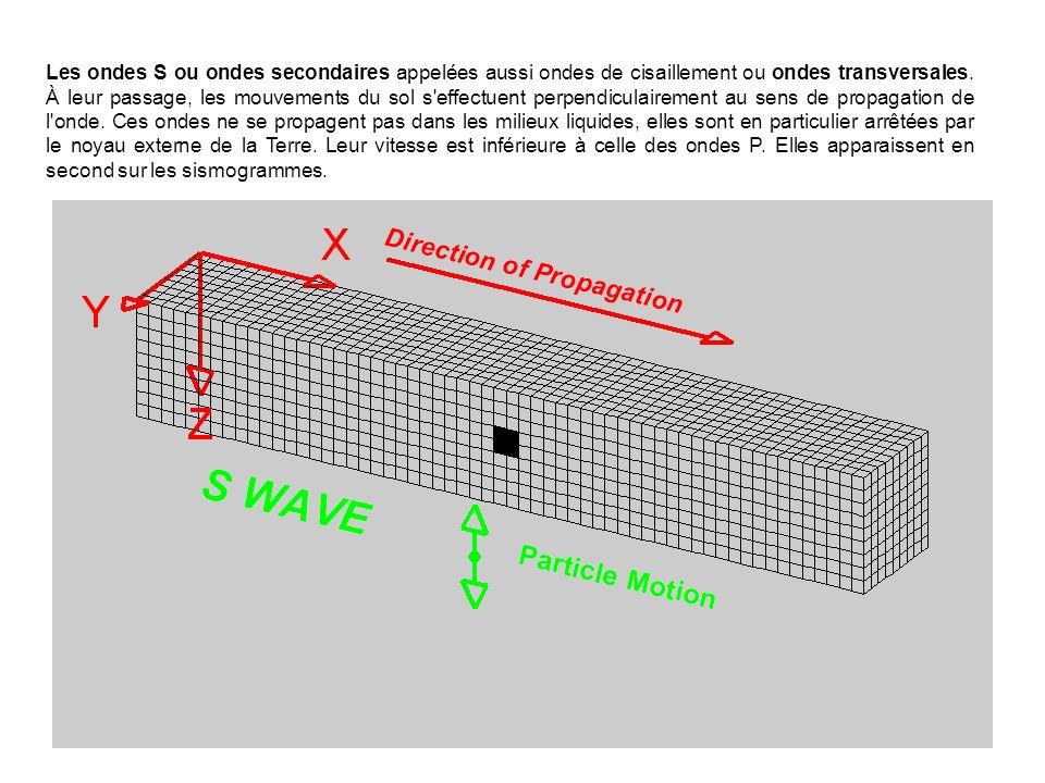 Les ondes S ou ondes secondaires appelées aussi ondes de cisaillement ou ondes transversales. À leur passage, les mouvements du sol s'effectuent perpe