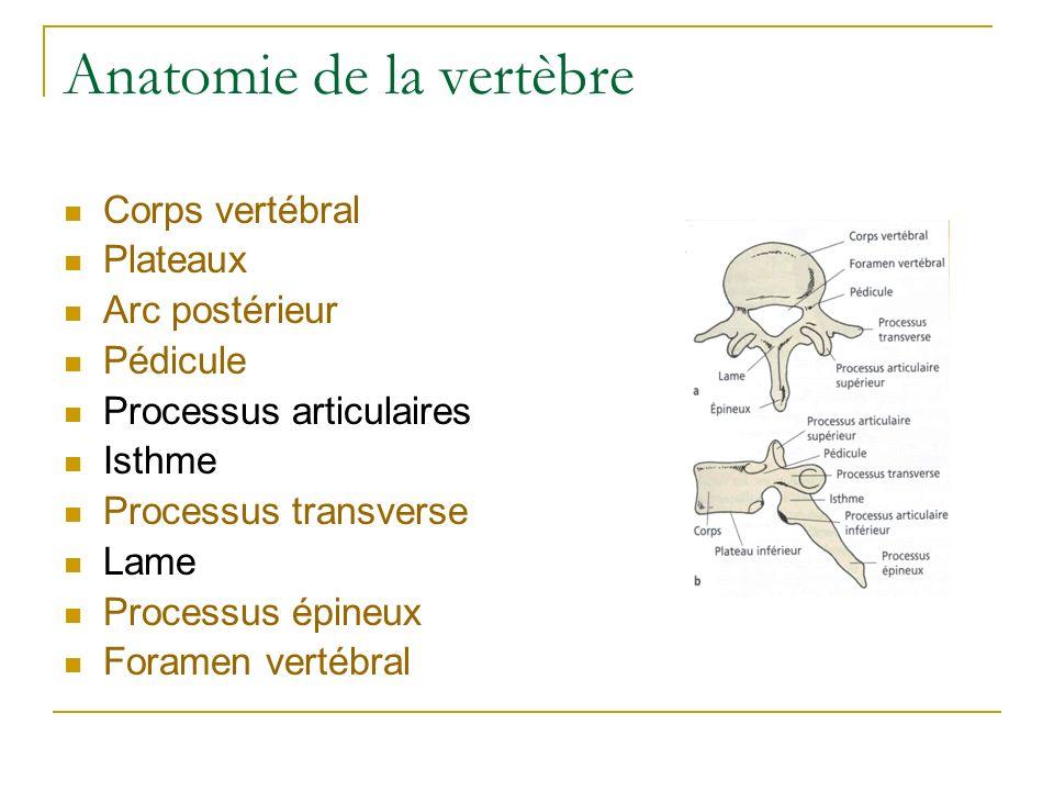 Anatomie de la vertèbre Corps vertébral Plateaux Arc postérieur Pédicule Processus articulaires Isthme Processus transverse Lame Processus épineux For