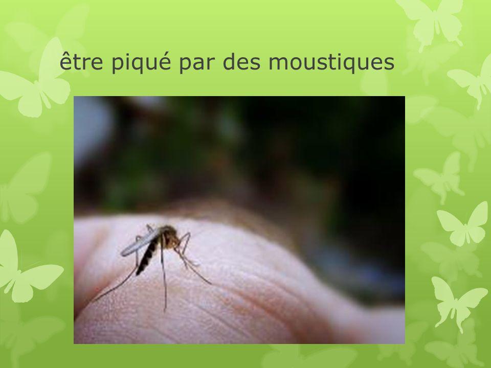 être piqué par des moustiques