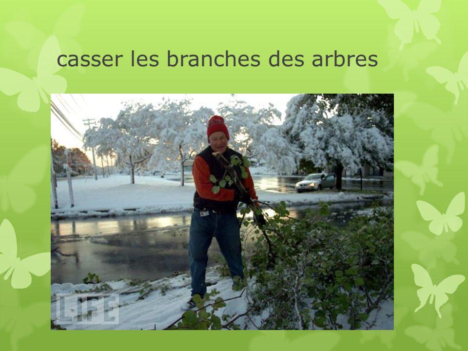casser les branches des arbres
