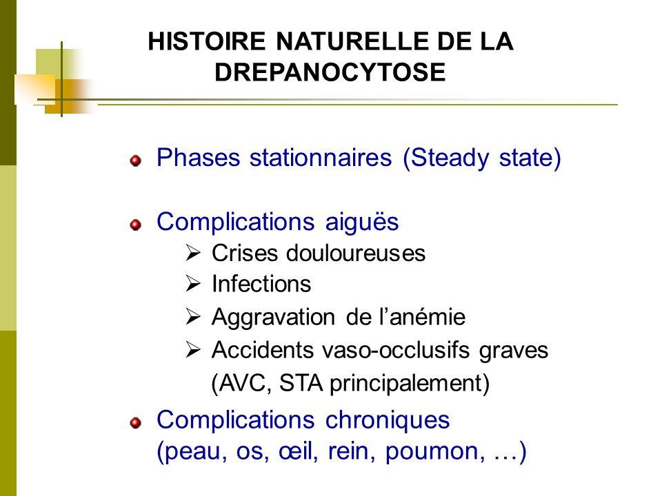 HISTOIRE NATURELLE DE LA DREPANOCYTOSE Phases stationnaires (Steady state) Complications aiguës Crises douloureuses Infections Aggravation de lanémie