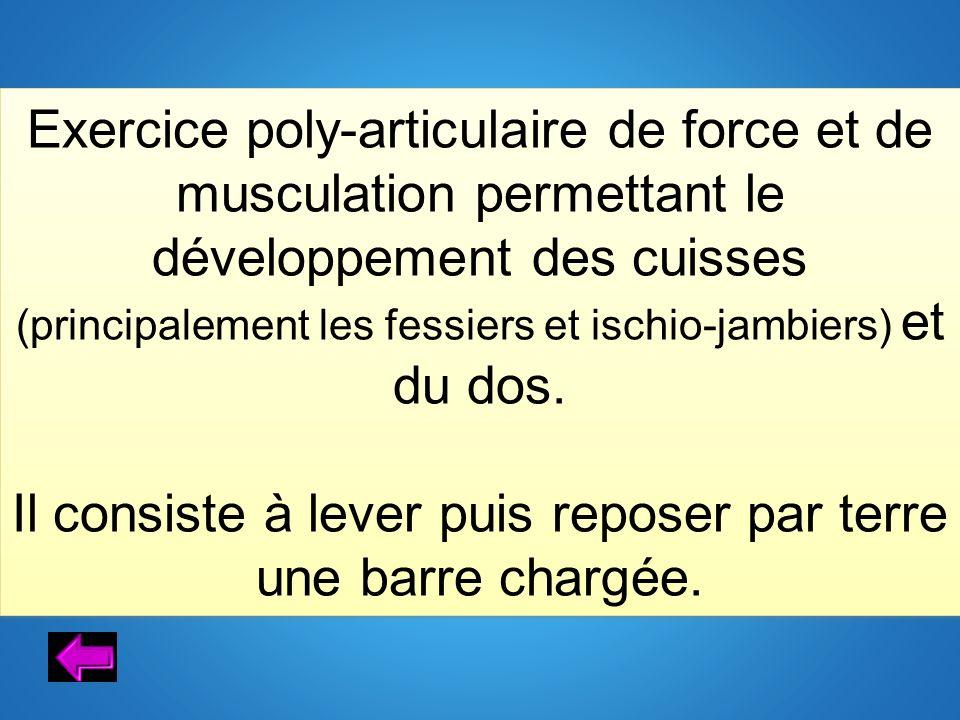 Exercice poly-articulaire de force et de musculation permettant le développement des cuisses (principalement les fessiers et ischio-jambiers) et du do