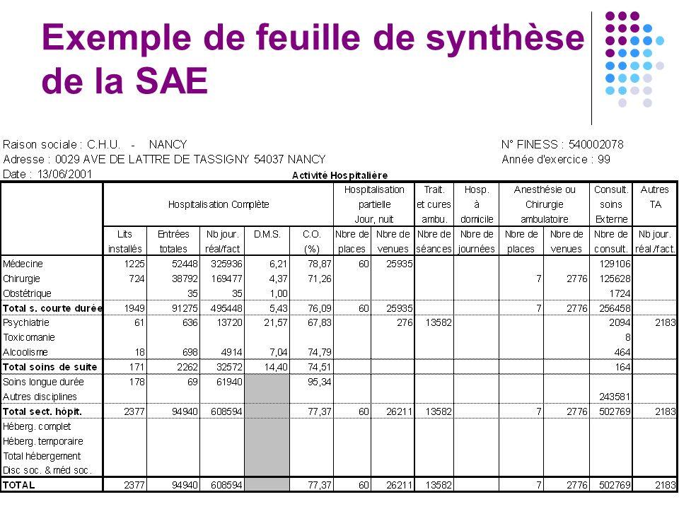 8 Exemple de feuille de synthèse de la SAE