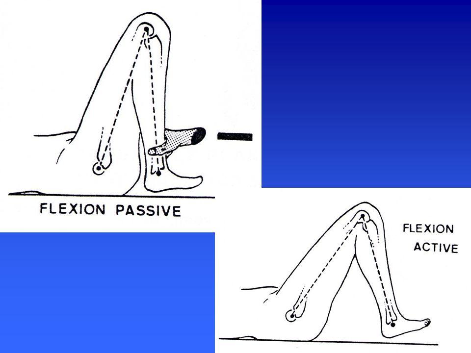 MOUVEMENTS Dans le plan horizontal Dans le plan horizontal rotation axiale interne ou externe rotation axiale interne ou externe action de porter le pied en DD ou en DHS action de porter le pied en DD ou en DHS étude uniquement passive étude uniquement passive assis jambe pendante assis jambe pendante décubitus ventral genou fléchi décubitus ventral genou fléchi pas de rotation en extension (genou verrouillé) pas de rotation en extension (genou verrouillé) 5 à 10° en RI, 5 à 10° en RE 5 à 10° en RI, 5 à 10° en RE