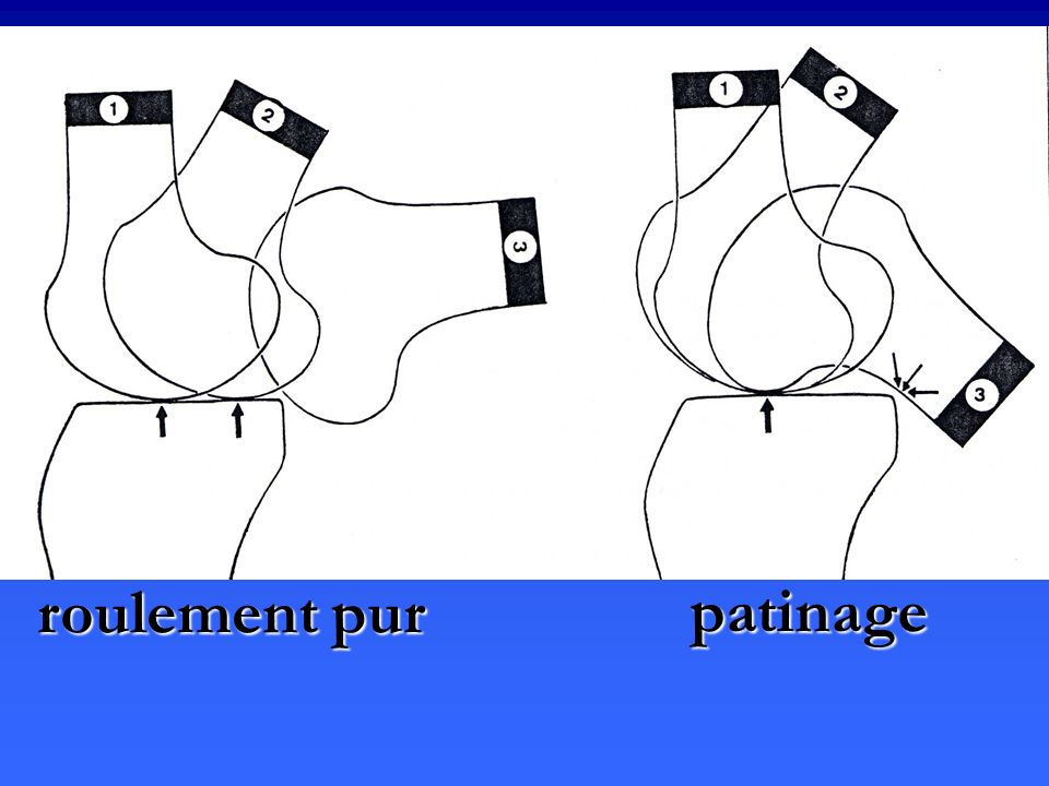 roulement pur patinage