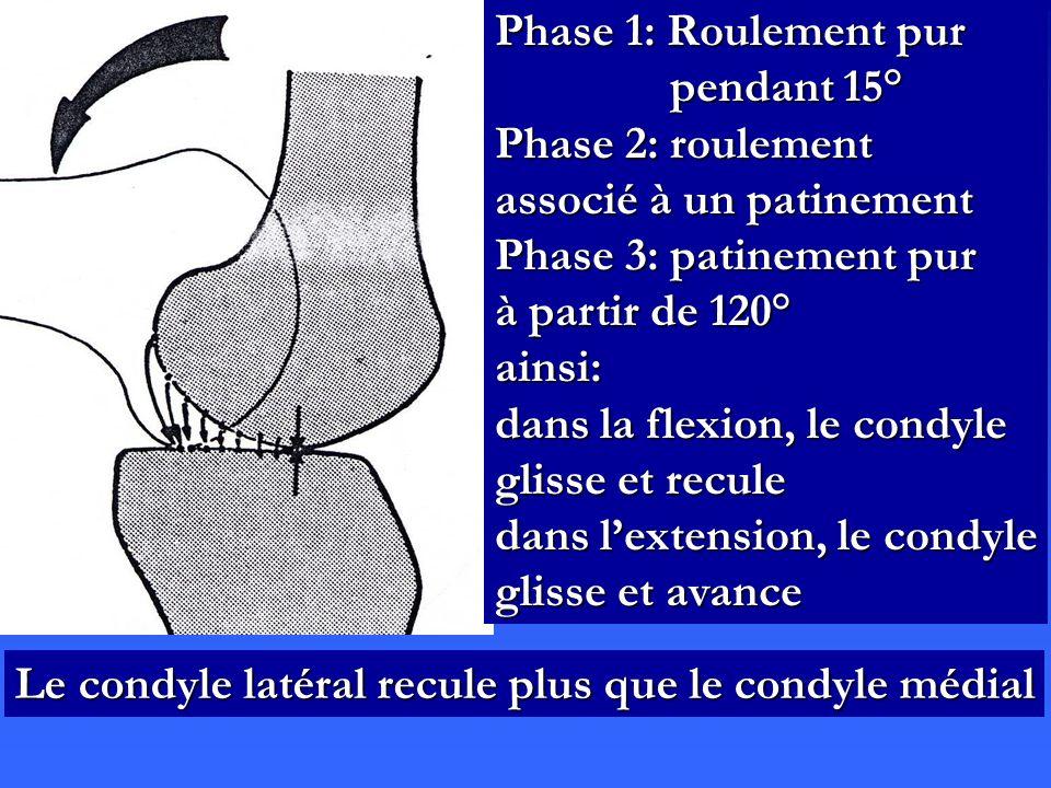 Phase 1: Roulement pur pendant 15° Phase 2: roulement associé à un patinement Phase 3: patinement pur à partir de 120° ainsi: dans la flexion, le cond