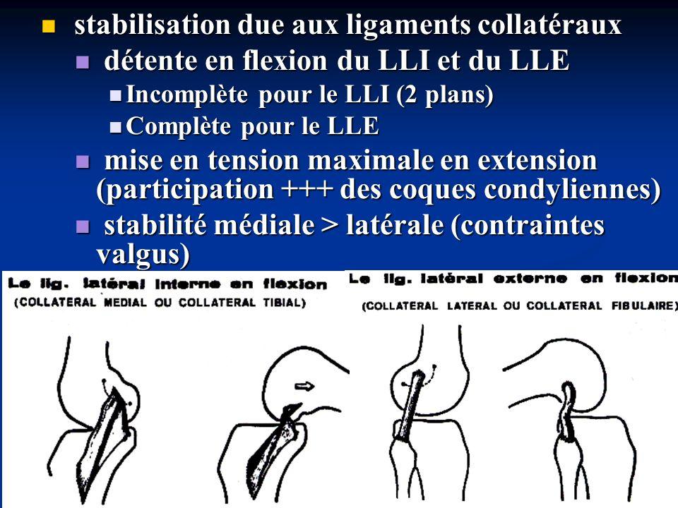 stabilisation due aux ligaments croisés stabilisation due aux ligaments croisés ils sont indispensables à la stabilisation antéro-postérieure en dehors de lextension pour lutter contre le déplacement en tiroir antéro-postérieur ils sont indispensables à la stabilisation antéro-postérieure en dehors de lextension pour lutter contre le déplacement en tiroir antéro-postérieur ils pallient linsuffisance des formations périphériques en flexion ils pallient linsuffisance des formations périphériques en flexion seule une disposition croisée en flexion et en extension de ces ligaments autorise: seule une disposition croisée en flexion et en extension de ces ligaments autorise: une mobilité en flexion-extension une mobilité en flexion-extension une stabilisation lors de ce mouvement une stabilisation lors de ce mouvement leur disposition fasciculaire et croisée explique que les LC sont toujours en tension au cours de la flexion-extension leur disposition fasciculaire et croisée explique que les LC sont toujours en tension au cours de la flexion-extension