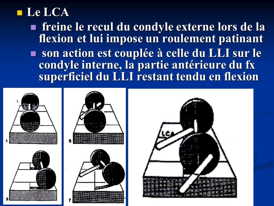 Le LCP Le LCP freine lavancée du condyle interne lors du passage de la flexion à lextension et lui impose un roulement patinant freine lavancée du condyle interne lors du passage de la flexion à lextension et lui impose un roulement patinant son action est couplée à celle du LLE sur le condyle externe, qui en se tendant lors de lextension freine lavance du condyle externe et loblige à patiner son action est couplée à celle du LLE sur le condyle externe, qui en se tendant lors de lextension freine lavance du condyle externe et loblige à patiner