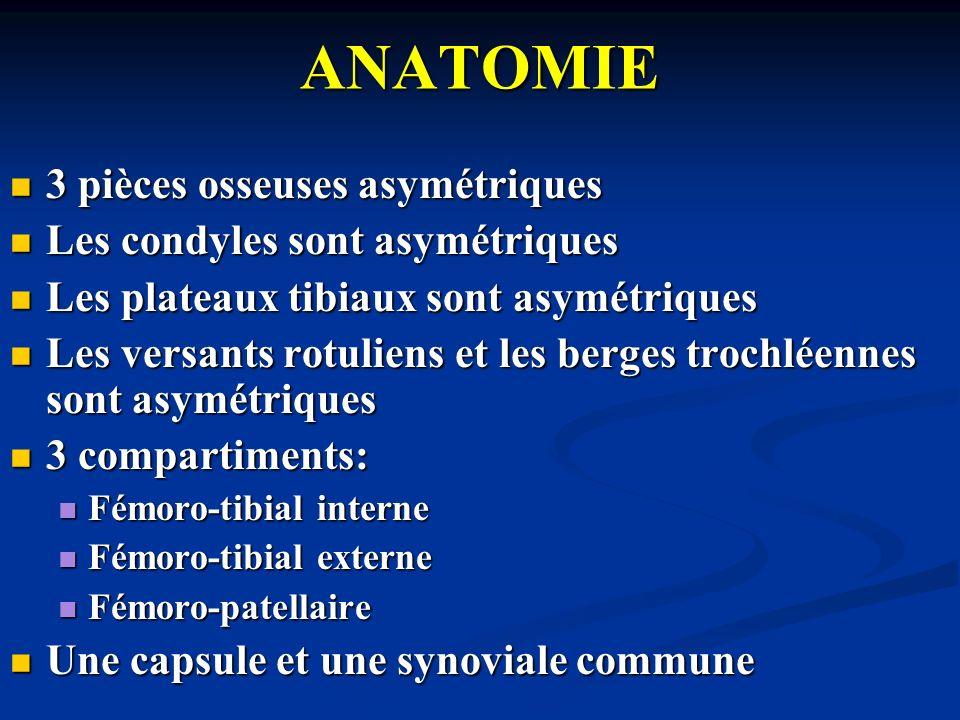 ANATOMIE 3 pièces osseuses asymétriques 3 pièces osseuses asymétriques Les condyles sont asymétriques Les condyles sont asymétriques Les plateaux tibi