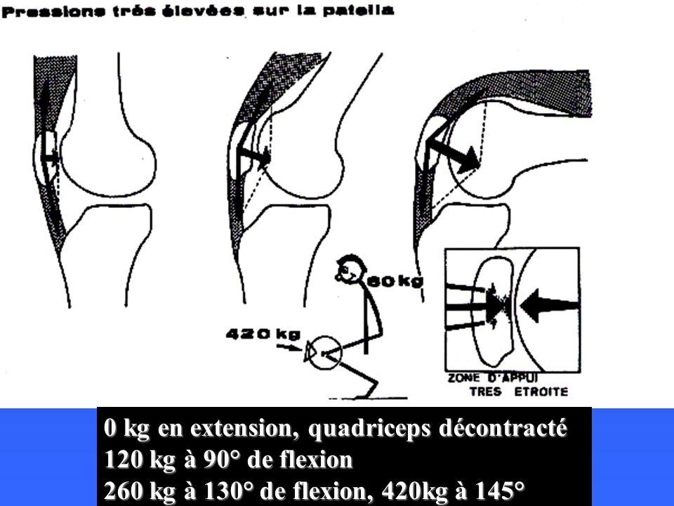 LARTICULATION FEMORO- PATELLAIRE ET LAPPAREIL EXTENSEUR Modification de laxe de travail et efficacité du quadriceps Modification de laxe de travail et efficacité du quadriceps le Q a un axe oblique en DD et en bas (parallèle au fémur qui est en valgus) alors que le tendon rotulien a un axe de travail oblique vers le bas et le dehors le Q a un axe oblique en DD et en bas (parallèle au fémur qui est en valgus) alors que le tendon rotulien a un axe de travail oblique vers le bas et le dehors ces 2 axes forment un angle ouvert vers le DH ces 2 axes forment un angle ouvert vers le DH la force résultante est subluxante vers le DH la force résultante est subluxante vers le DH la rotule dans sa trochlée empêche la luxation lors de la contraction du quadriceps la rotule dans sa trochlée empêche la luxation lors de la contraction du quadriceps